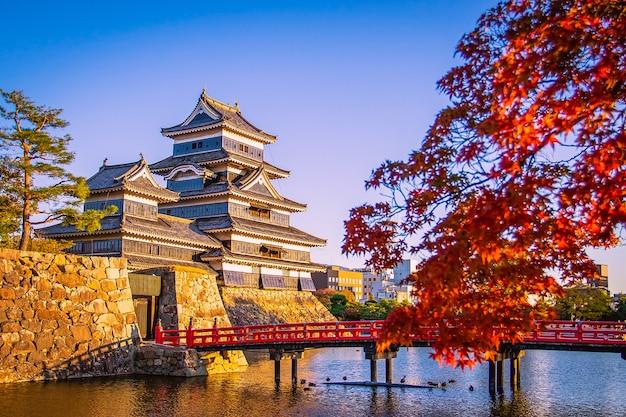 Castelo de matsumoto com maple folhas no outono em nagano, japão