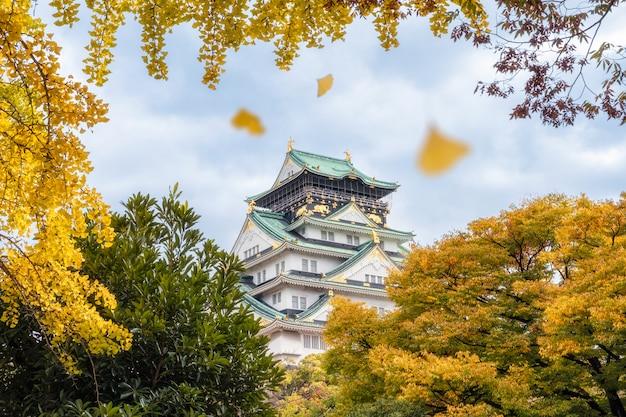 Castelo de osaka com folhas de ginkgo amarelo está caindo no outono