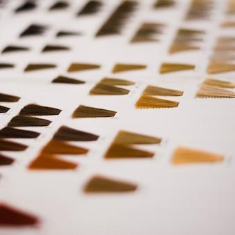 Catálogo de cores de cabelo