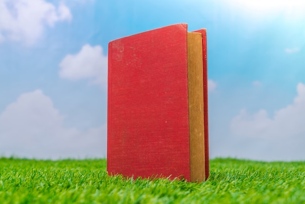 Catálogo em branco, revistas, livro mock up na grama verde