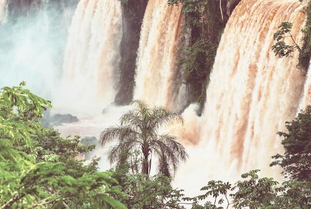 Cataratas impessivas do iguaçu (iguaçu) na fronteira entre a argentina e o brasil. cachoeiras poderosas nas selvas.