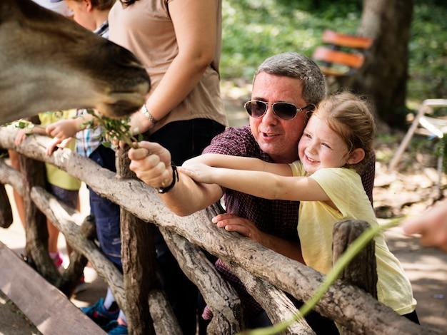Caucasiano pai e filha alimentando a girafa no zoológico