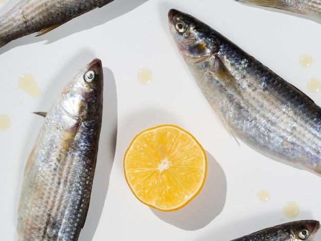 Cavala close-up peixes em um prato