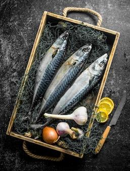 Cavala de peixe cru na bandeja com rede de pesca, alho e limão cortado. em superfície rústica escura