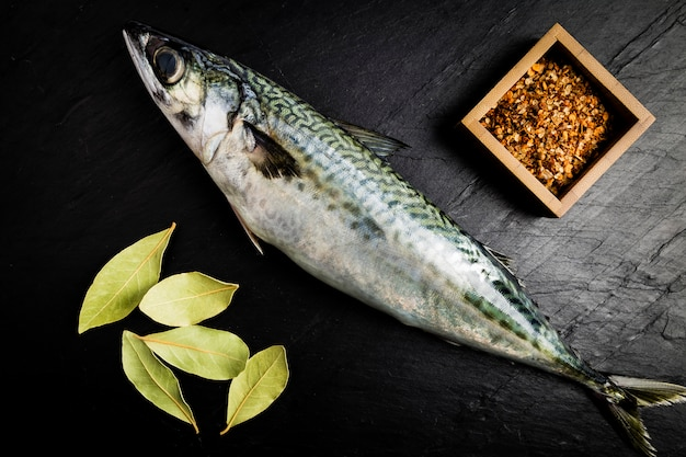 Cavala peixe fresco com algumas folhas de louro e algumas especiarias em uma tabela de ardósia preta