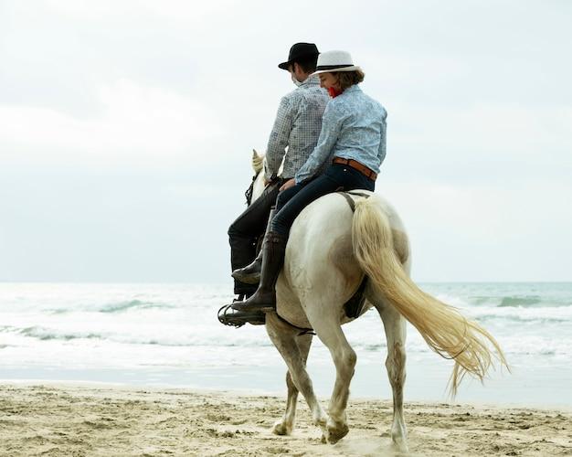 Cavaleiros e cavalos