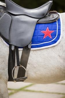 Cavalo branco com assento de couro preto e uma sela azul com estrela escarlate bordada.