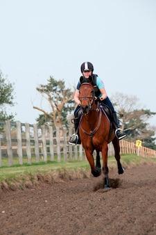 Cavalo e cavaleiro em um campo