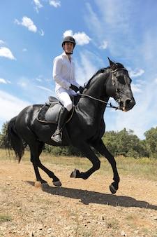 Cavalo e homem jovem