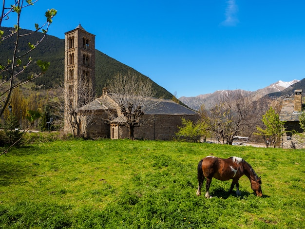 Cavalo pastando no pé de uma igreja