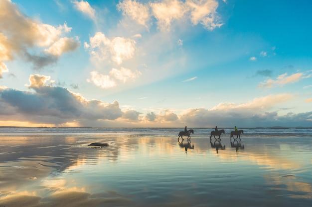 Cavalos caminhando na praia ao pôr do sol