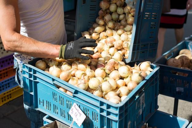 Cebola à venda no mercado dos fazendeiros