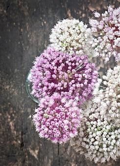 Cebola flores na mesa de madeira velha