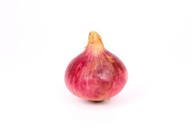 Cebola roxa orgânica