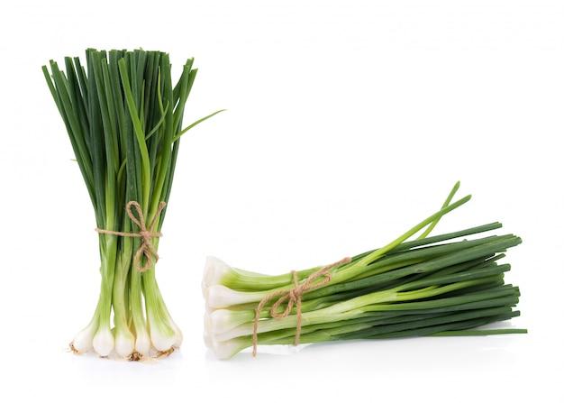 Cebola verde