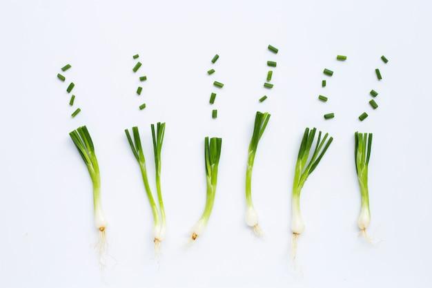 Cebolas verdes isoladas no branco
