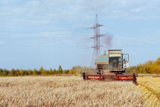 Ceifeira-debulhadora colheitas conceito de trigo maduro de uma rica colheita agrícola imagem
