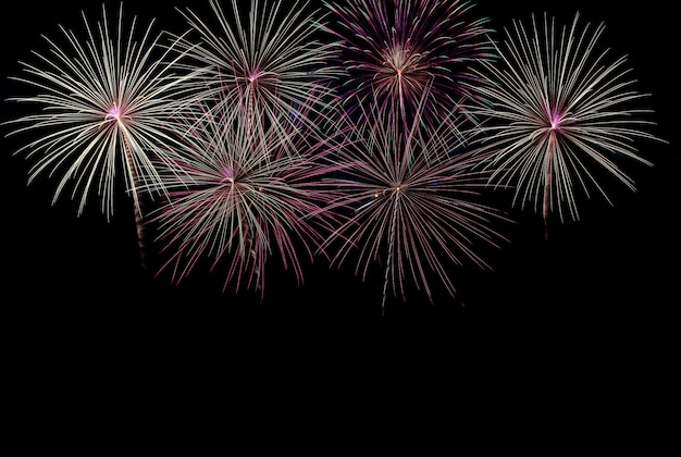 Celebração de fogos de artifício coloridos de beleza sobre o fundo do céu negro