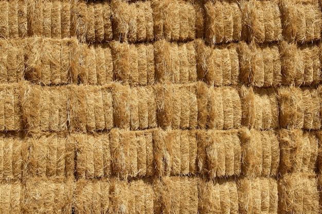 Celeiro com pilha de forma quadrada na textura de cereais ao ar livre de colunas