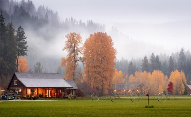 Celeiros no outono madeira com nevoeiro