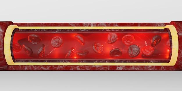 Células vermelhas do sangue, camada da pele, veias, ilustração 3d, cirurgia intravascular