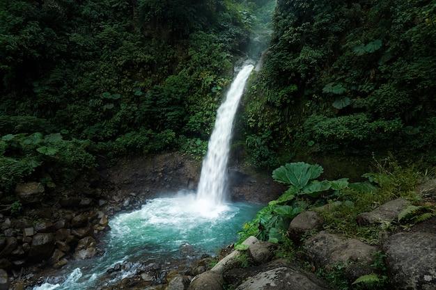 Cena da manhã da cachoeira de la paz em alajuela