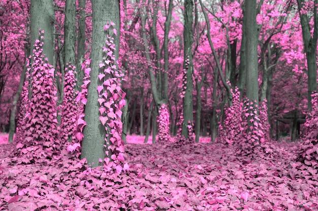 Cena de fantasia da floresta rosa com árvores e hera