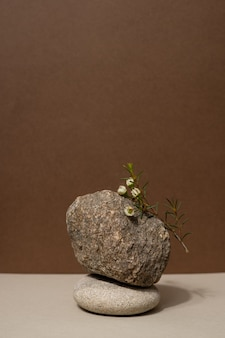 Cena de natureza abstrata com composição de pedras e fundo bege neutro de ramo seco para cosmeti ...