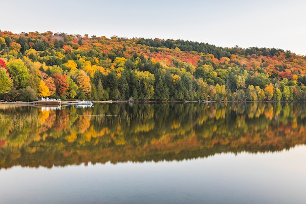 Cena de outono, árvores com reflexos no lago