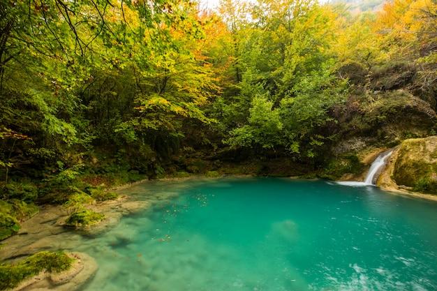 Cena de outono no rio nacedero de urederra, navarra, norte da espanha
