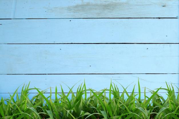 Cena de piso de madeira azul claro com grama verde tem espaço para escrever mensagens