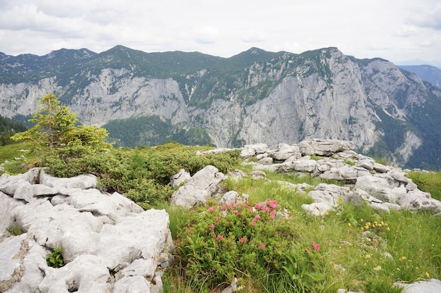 Cena de tirar o fôlego de uma paisagem montanhosa coberta de verde