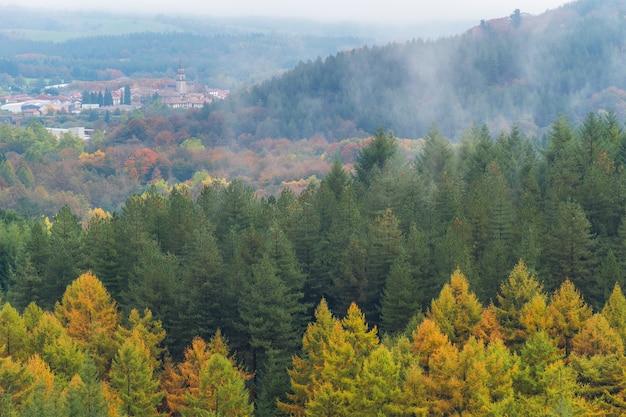Cena de uma floresta no outono com uma manhã de nevoeiro