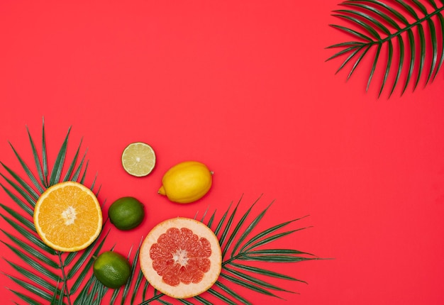 Cena de verão com folhas de palmeira tropical e frutas cítricas em fundo vermelho. estilo plano mínimo. copie o espaço