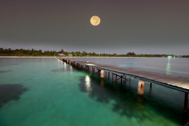 Cena noturna em praia tropical
