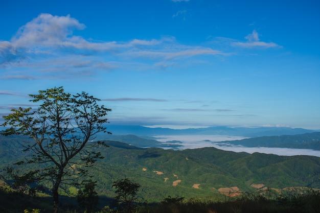 Cenário da montanha nos vales bonitos do inverno nas montanhas de doi chang mub, mae fa luang, chiang rai. a beleza do fundo da natureza.