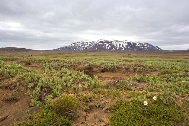 Cenário de paisagem natureza islandesa perto de hvitarnes