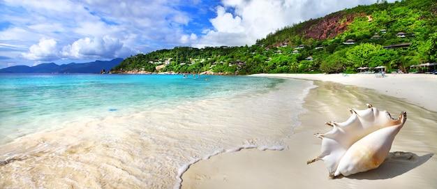 Cenário de praia tropical idílico