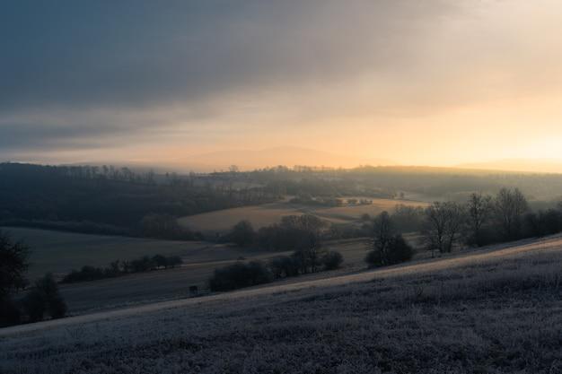 Cenário do pôr do sol com vista panorâmica das árvores no campo
