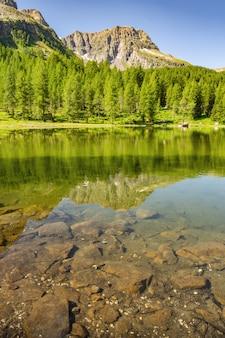 Cenário dos alpes com floresta verde e lago