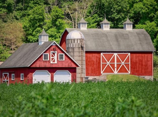 Cenário ensolarado de uma fazenda com dois celeiros