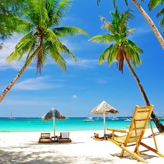 Cenário exótico de praia tropical. cadeiras de praia sob palmeiras