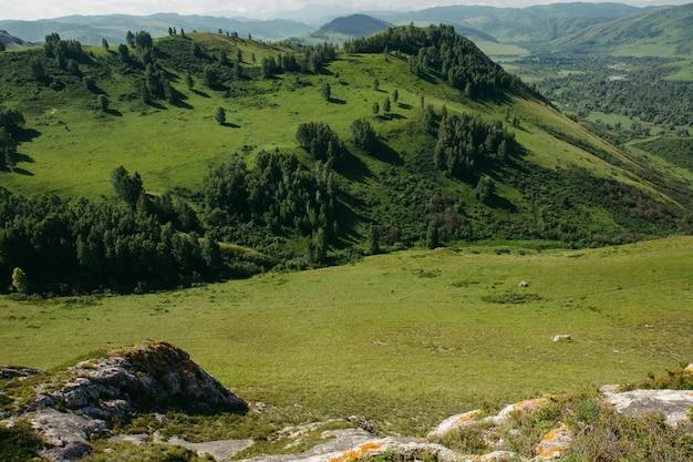 Cenário incrível do vale entre as montanhas e colinas