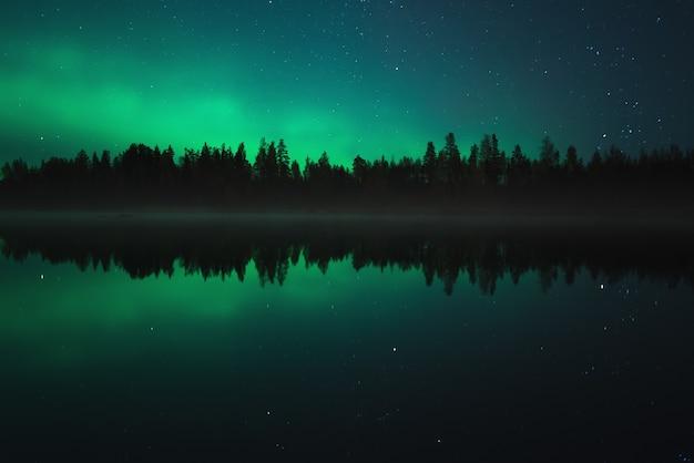 Cenário noturno. aurora boreal refletida em um lago na floresta