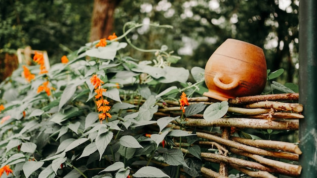 Cenário rural vintage, cerca de madeira verde com potes de barro, flores no jardim