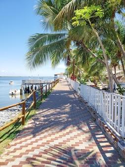 Cenário tropical na cidade costeira de mangue seco com passarela, coqueiros, cais, barcos e grama