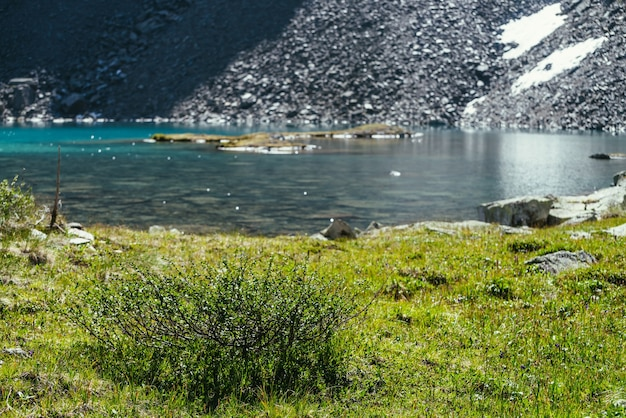 Cenário verde colorido com flora selvagem perto do lago de montanha. bela paisagem cênica com brilho ensolarado na superfície da água turquesa. lago glacial azure na luz solar. luzes refletidas no lago glaciar.