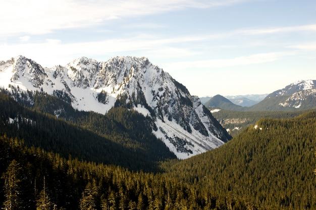 Cenário verde rodeado por montanhas nevadas