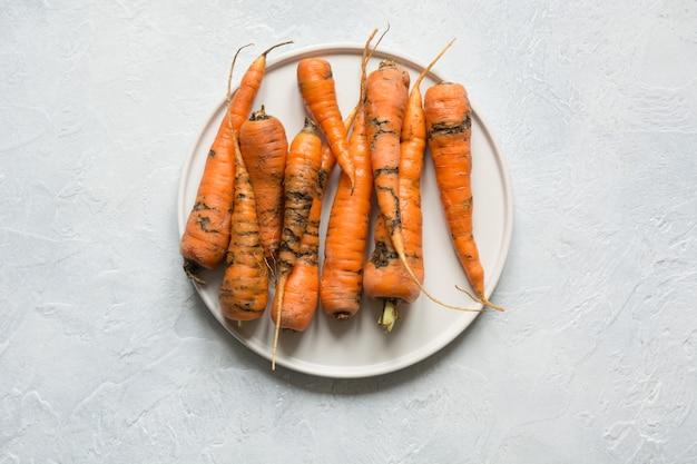 Cenoura orgânica feia, comida por pragas, estragada e mal cultivada.