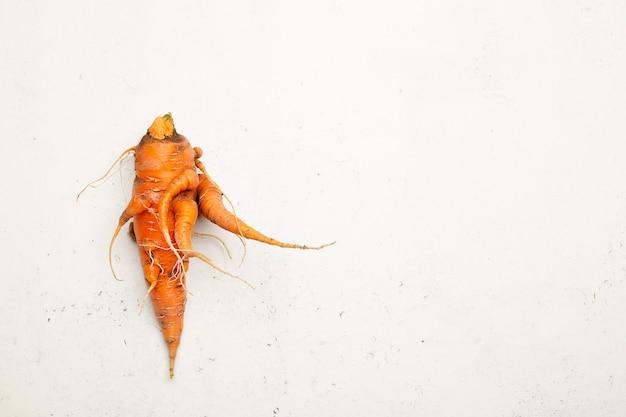 Cenoura orgânica pura feia colhida no jardim